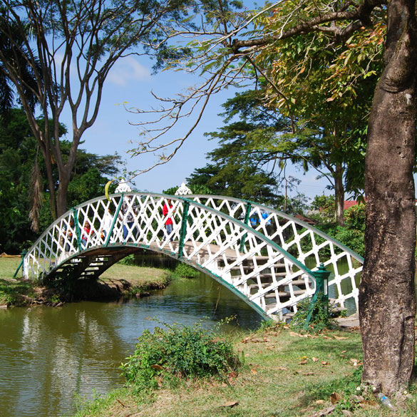 guyana botanical gardens kissing bridge